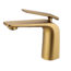 Esperia Brushed Yellow Gold Basin Mixer_5e80da5c5b3f2.jpeg