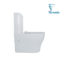 665x360x840mm Tornado Silent High End Back To Wall Ceramic Toilet Suite_5e8a3125ac463.jpeg