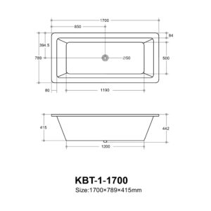 POSEIDON DIB1700 Drop in Bathtub 1700*789*415mm (Gloss White)